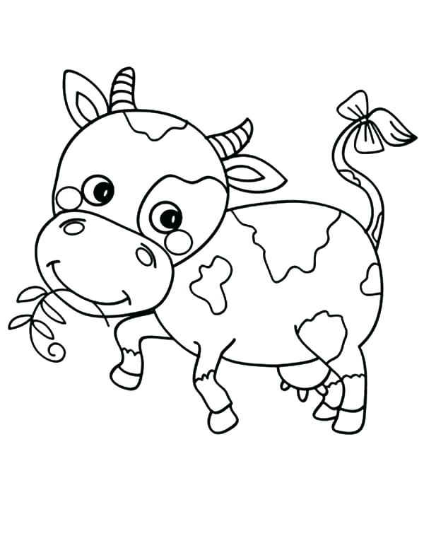 600x775 Free Cow Coloring Pages