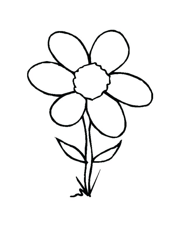 600x777 Flowering Coloring Pages Wild Grass Flower Coloring Page Free