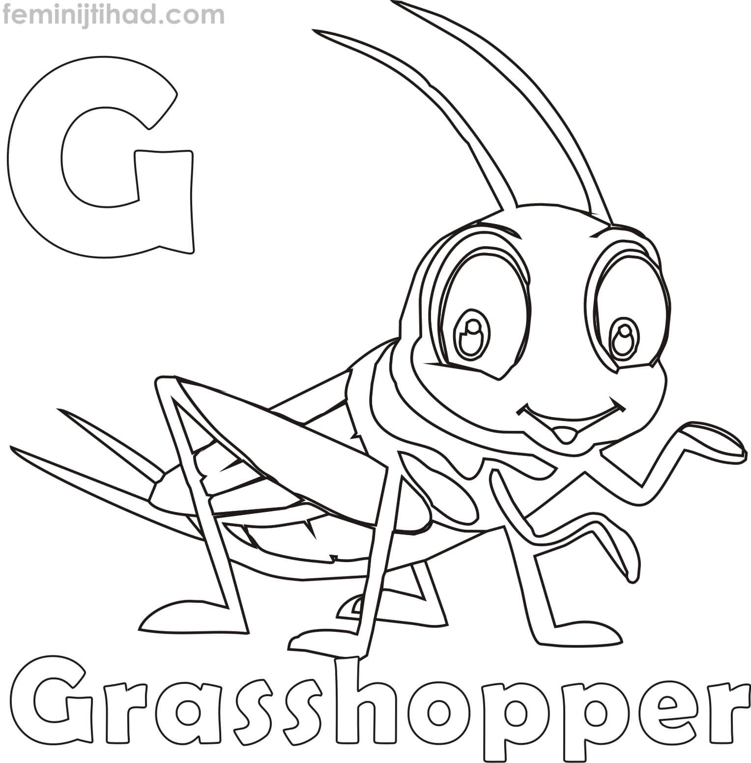 1528x1553 Grasshopper Coloring Pages Coloring Pages For Kids