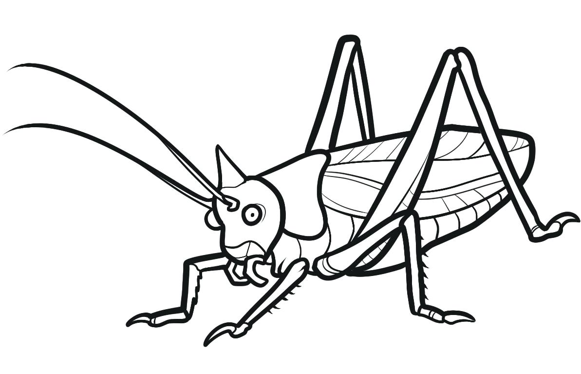 1193x767 Coloring Pages For Adults Quotes Insect Colouring In Weddings