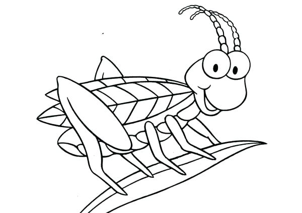 600x424 Grasshopper Coloring Pages Grasshopper Coloring Page Amazing