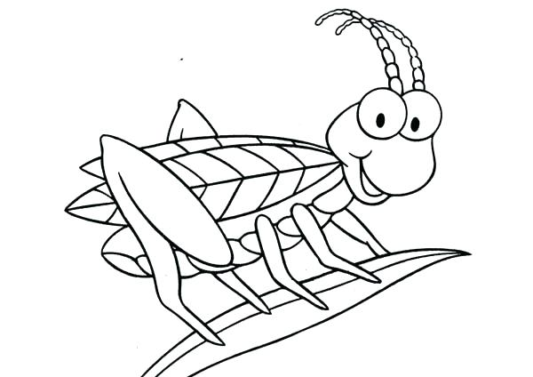 600x424 Grasshopper Coloring Page Grass Coloring Page Coloring Page