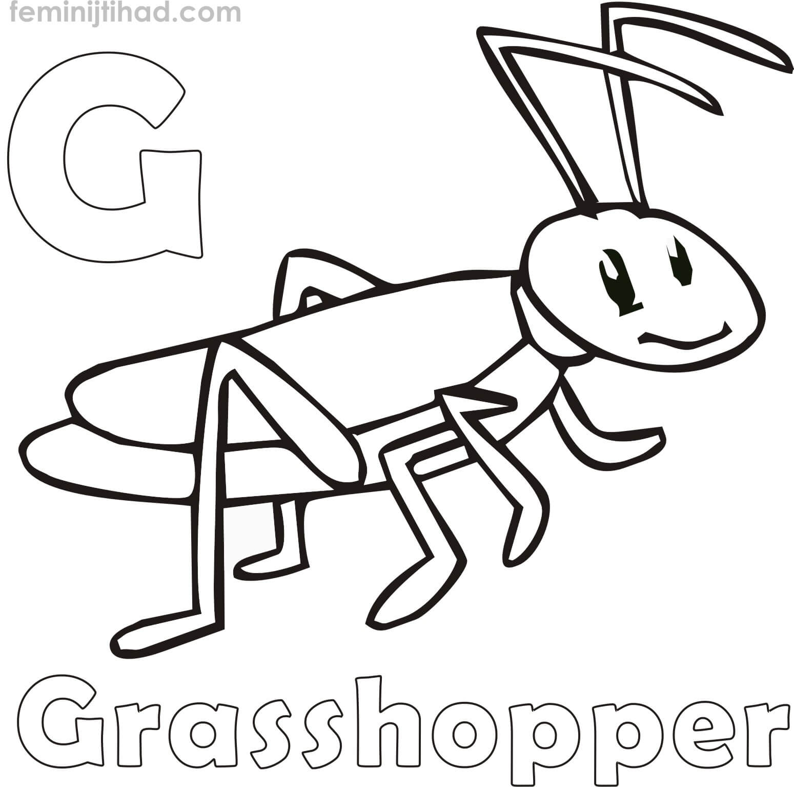 1549x1534 Grasshopper Coloring Pages Coloring Pages For Kids