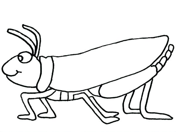 600x451 Grasshopper Eating Leaf Coloring Page Grasshoppers In Papers Music