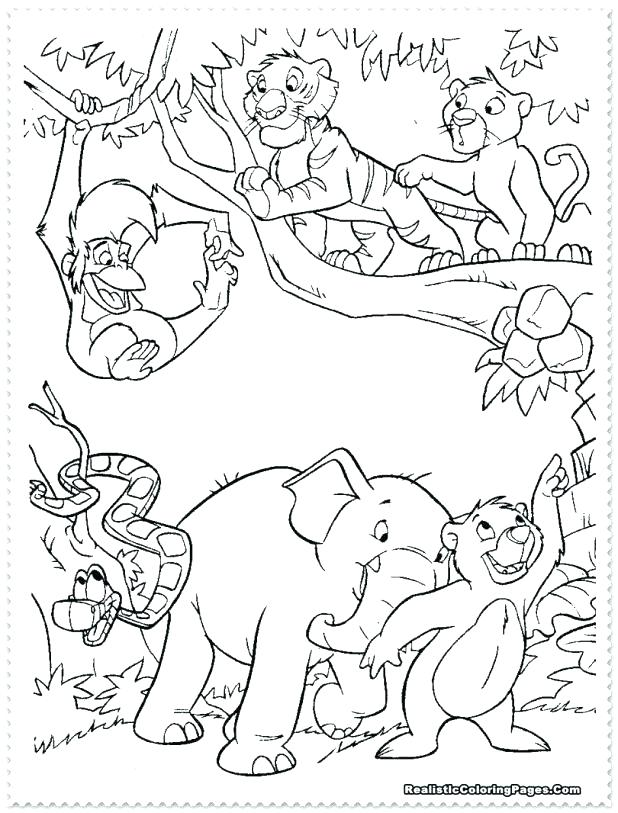 618x813 Wildlife Coloring Pages Wildlife Coloring Pages Medium Size
