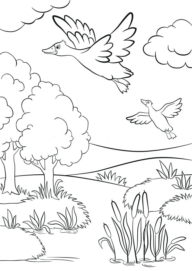 636x900 Grassland Coloring Pages Coloring Pages Of Trees And Grass Flower