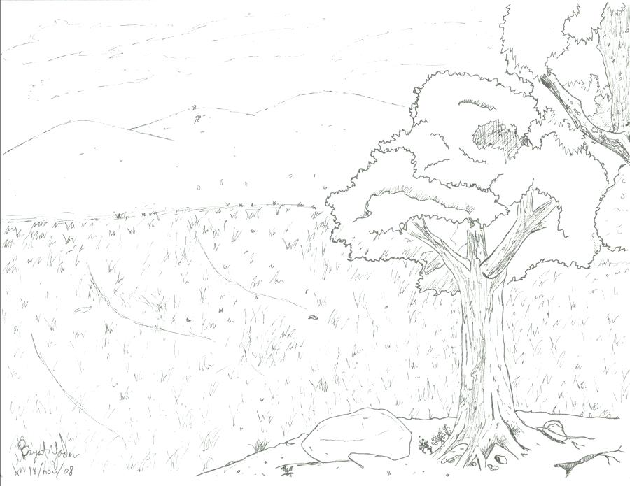 900x695 Grassland Coloring Pages Grassland Valley