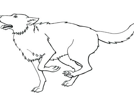 440x330 Gray Wolf Coloring Page Printable Wolf Coloring Pages Wolf Color