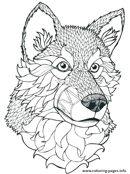 534x712 Grey Wolf Coloring Pages Best Angry Wolf Coloring Pages Free Grey