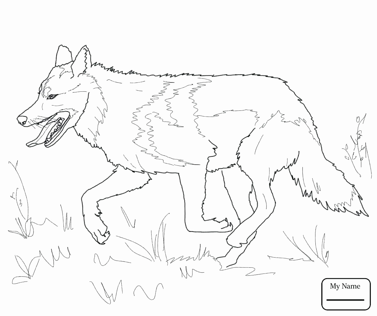 1224x1027 Wolf Coloring Pages For Adults Best Of Gray Wolf Drawing