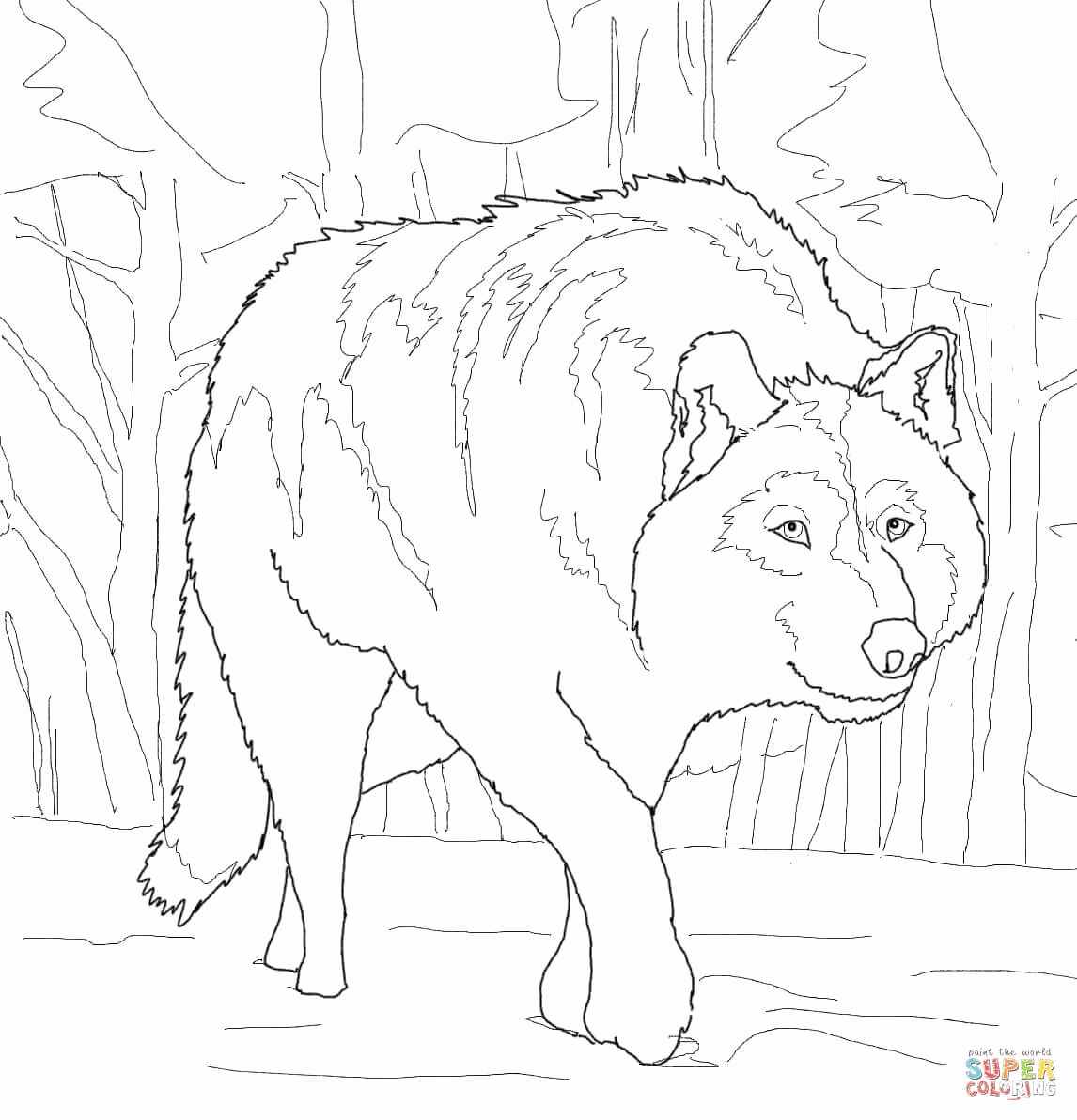 1146x1192 Wolf Coloring Pages For Adults Fresh Gray Wolf Drawing