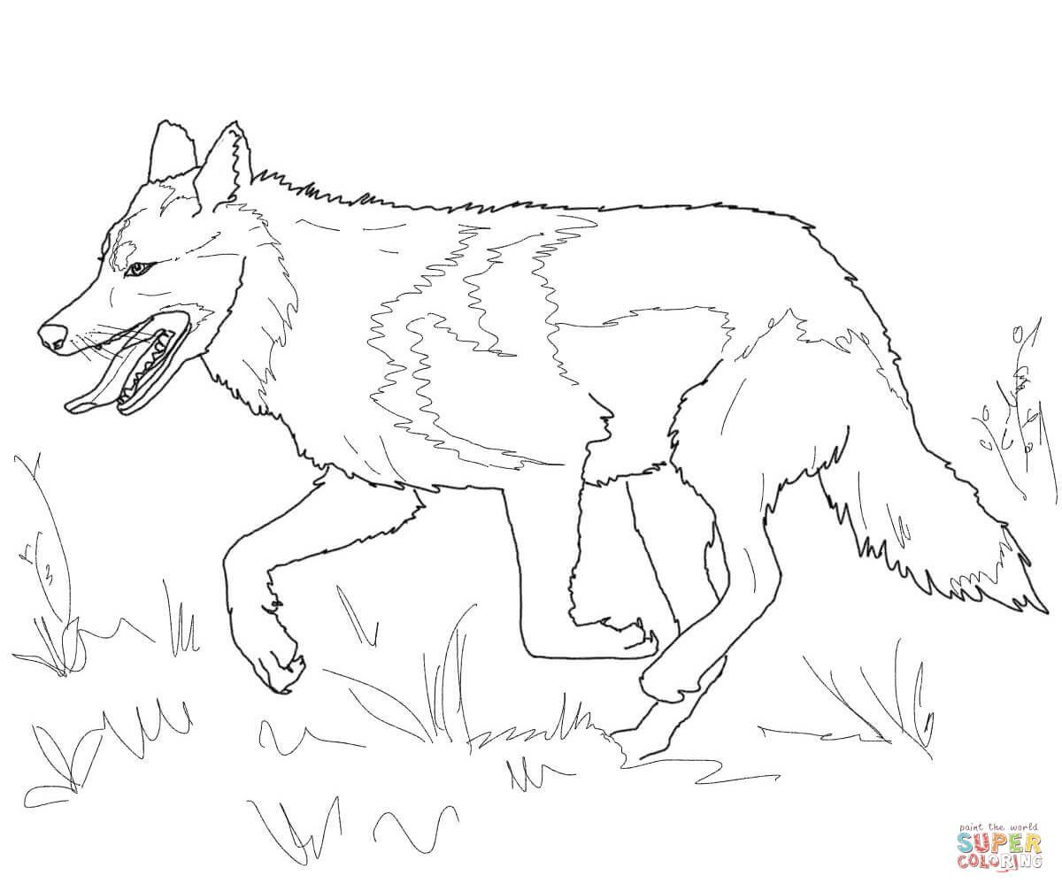 1200x1007 Running Mexican Grey Wolf Coloring Page