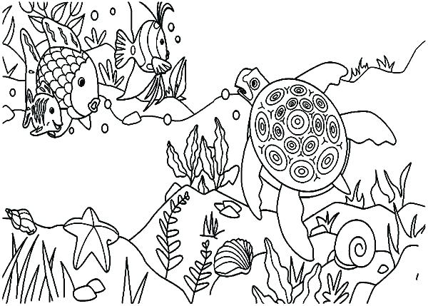 600x429 Coral Reef Coloring Page Coral Reef Coloring Pages Coral Reef