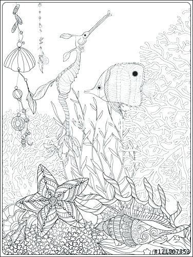 376x500 Great Barrier Reef Coloring Pages Coral Reef Stress Coloring Book