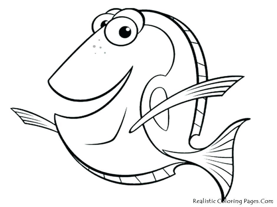 940x705 Coral Coloring Pages Simple Coral Reef Coloring Pages Coral Reef