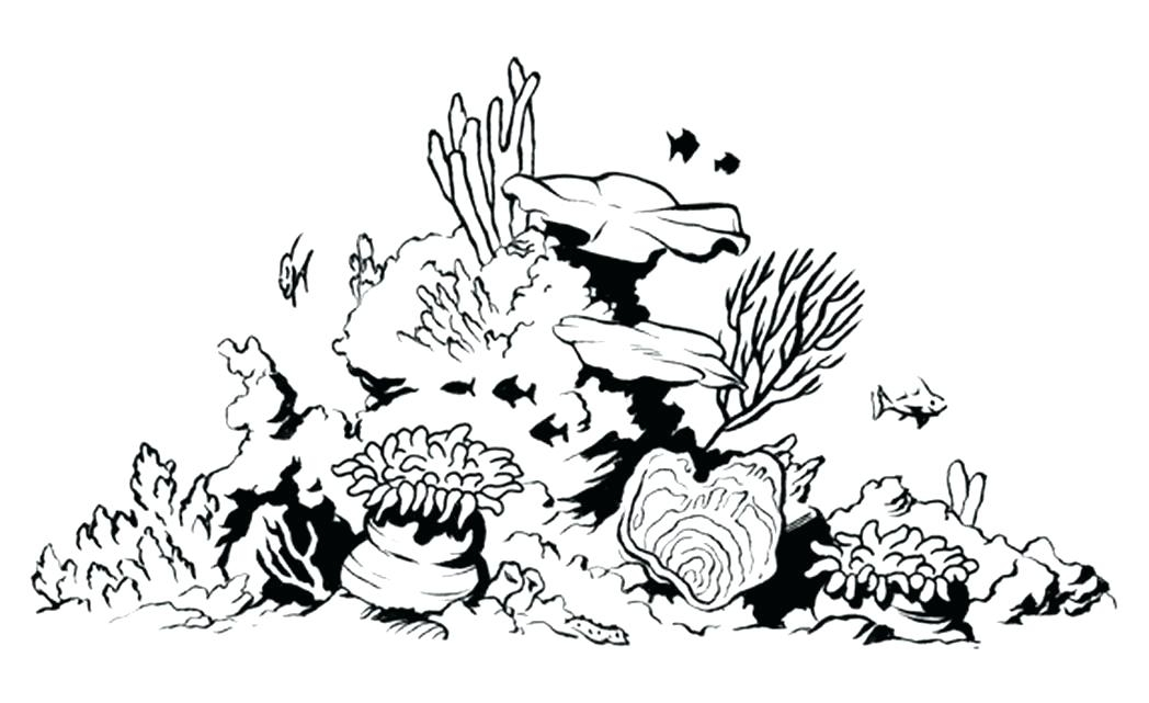 1048x641 Coral Reef Coloring Page Printable Coloring Page