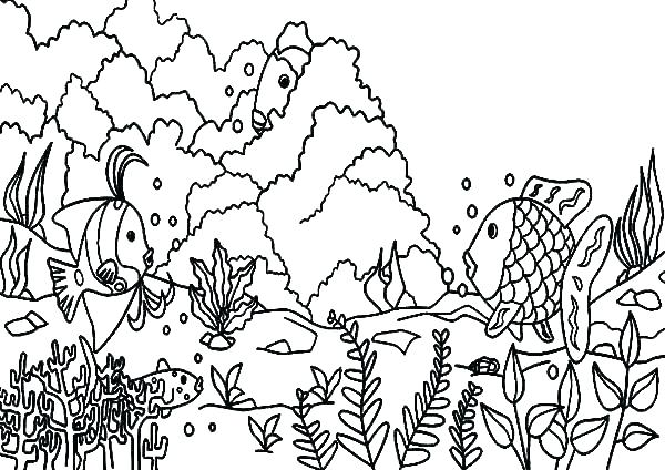600x424 Coral Reef Coloring Page Coral Coloring Pages Coral Reef Coloring