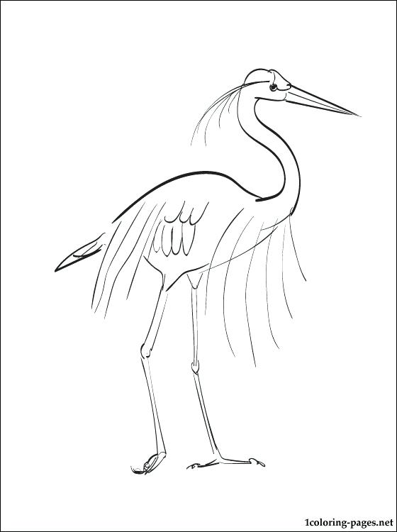 560x750 Coloring Page Great Blue Heron Coloring Pages Blue Heron Coloring
