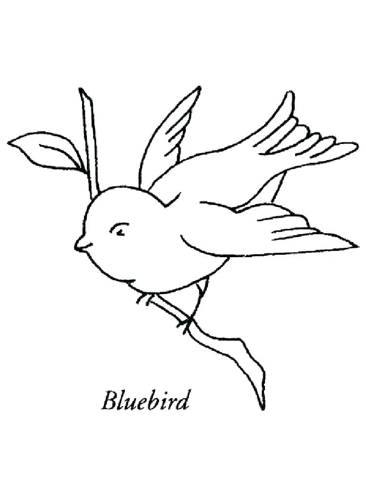 750x1000 Great Blue Heron Coloring Page Pin Drawn Bird