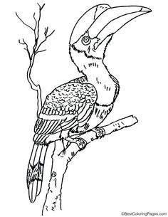 236x305 Great Blue Heron Coloring Page