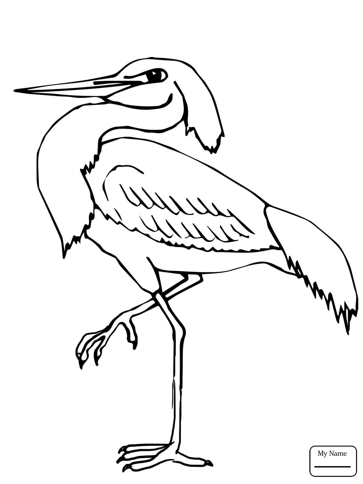 1224x1632 Hurry Blue Heron Coloring Page Free Printable Pages