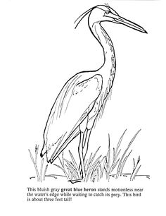 236x306 Image Result For Heron Drawing Spring Flowers Blue