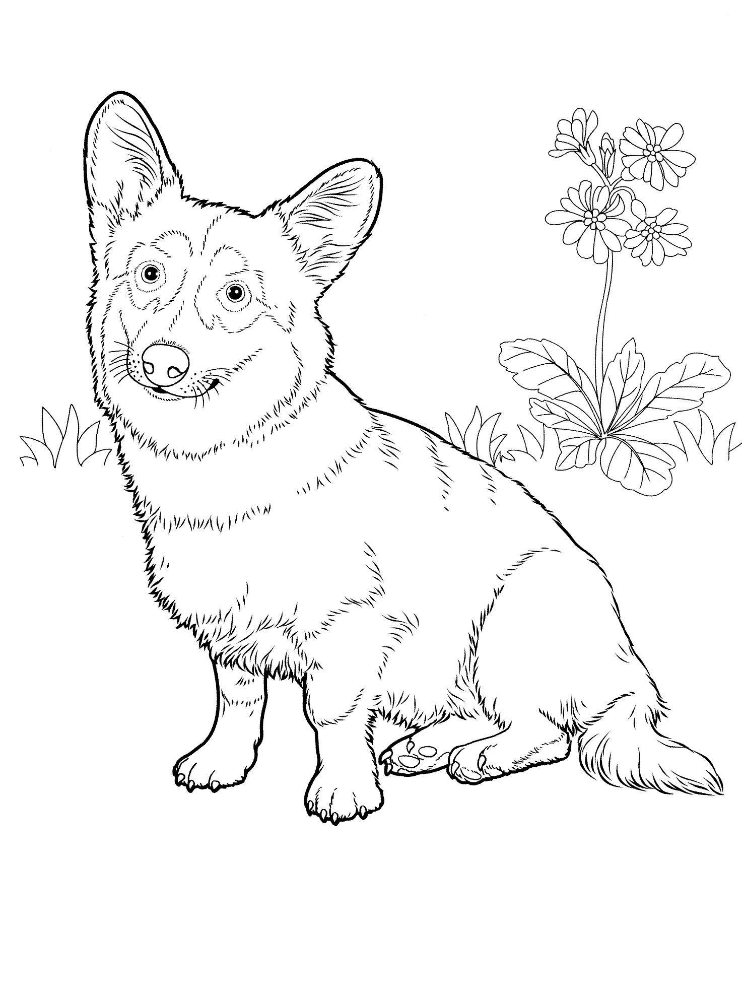 1473x1983 Dog Coloring Pages Teenagers Coloring Pages Adult Coloring