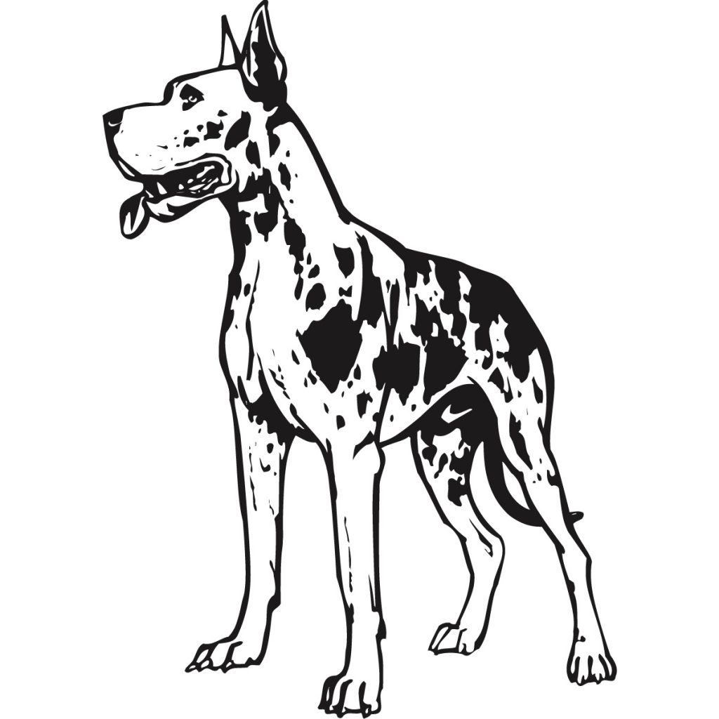 1024x1024 Great Dane Coloring Pages High Definition Umcubed Great Great