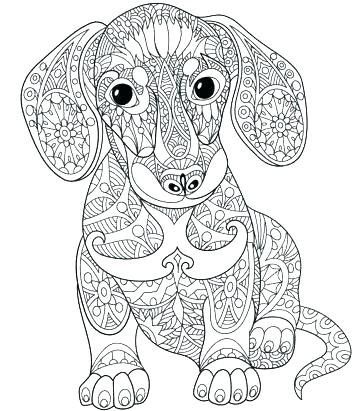 363x411 Free Printable Coloring Page From Sugar Golden Retriever