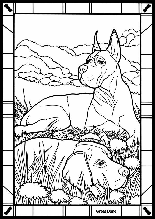 603x850 Great Coloring Pages Great Dane Coloring Pages Many Interesting