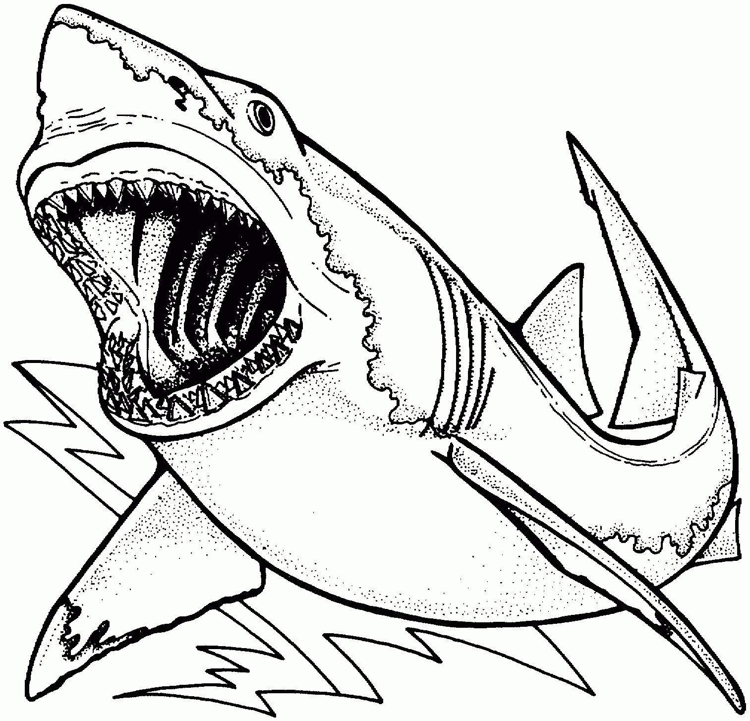 Great White Coloring Pages