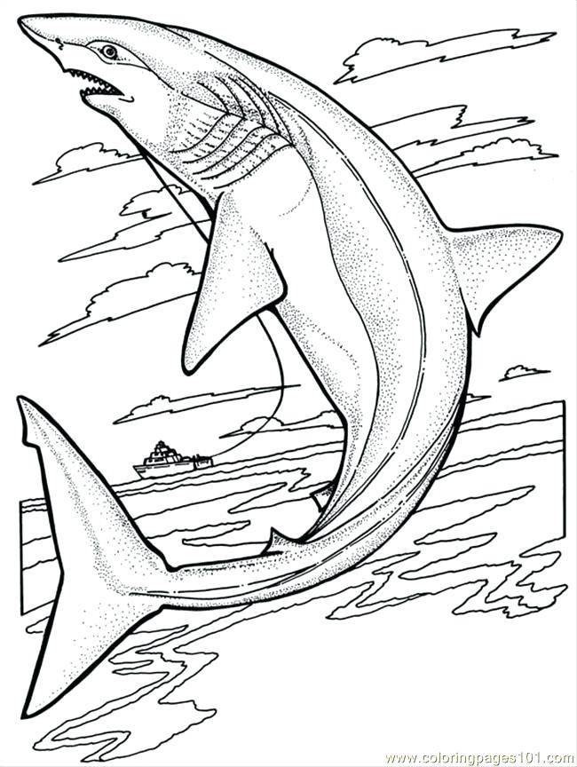 650x864 Great White Shark Coloring Pages Great White Shark Coloring Pages
