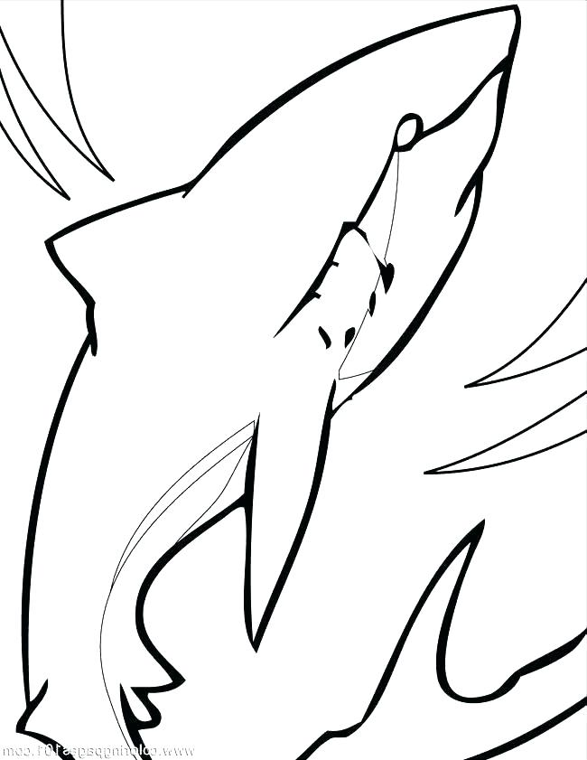 650x841 Megalodon Shark Coloring Pages Shark Coloring Pages Shark Coloring