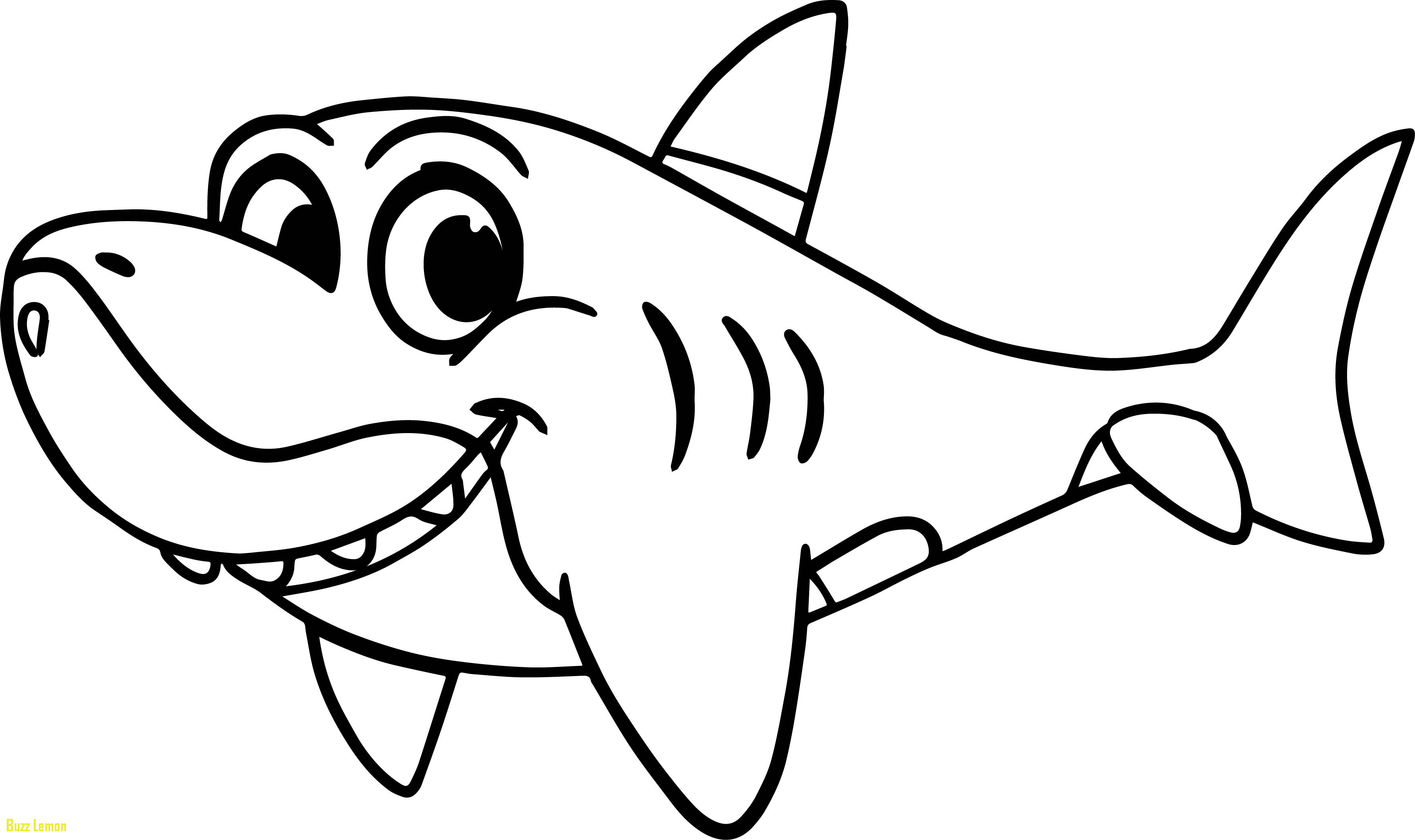 3562x2116 Beautiful Coloring Page Shark Buzz Coloring