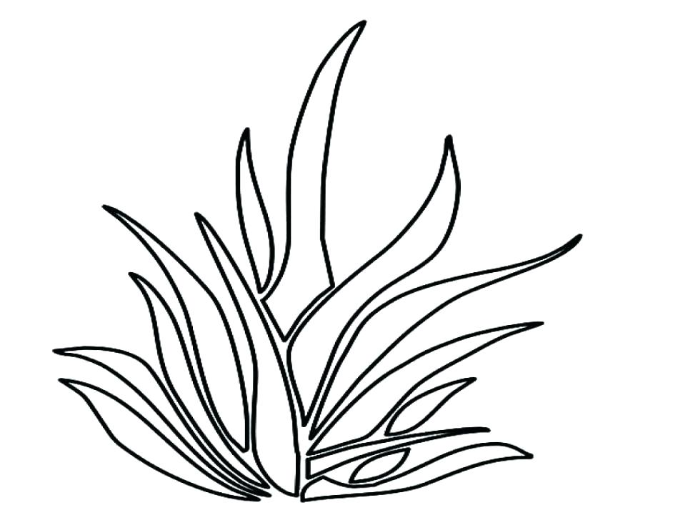 970x728 Garden Full Of Tall Grass Coloring Pages Color Garden Full Of Tall