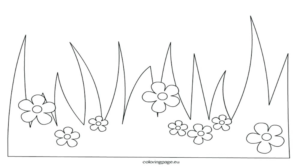 990x557 Grass Coloring Pages Beauteous Grass Coloring Page Colouring Pages