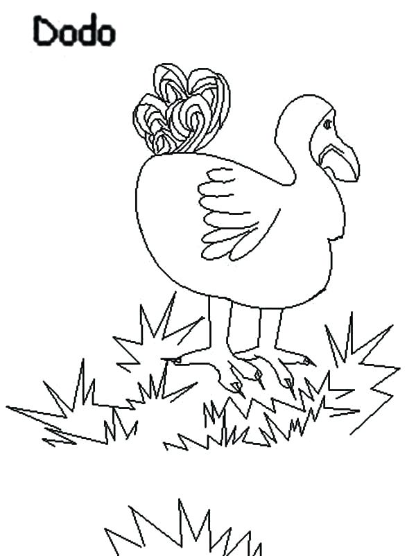 600x802 Grass Coloring Pages Dodo Bird Stepping On Grass Coloring Pages