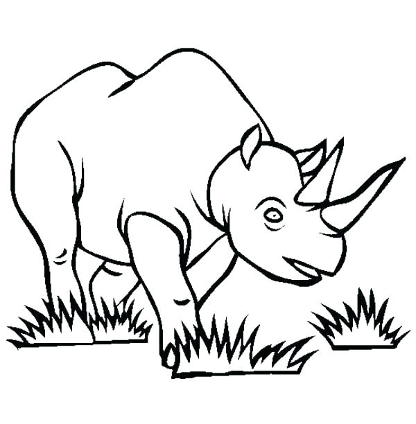 600x612 Rhinoceros Coloring Pages Drawn Rhino Coloring Colouring Pages
