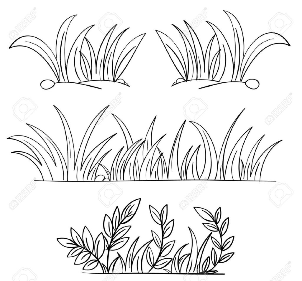 1024x955 Contemporary Grass Coloring Page Image Collection