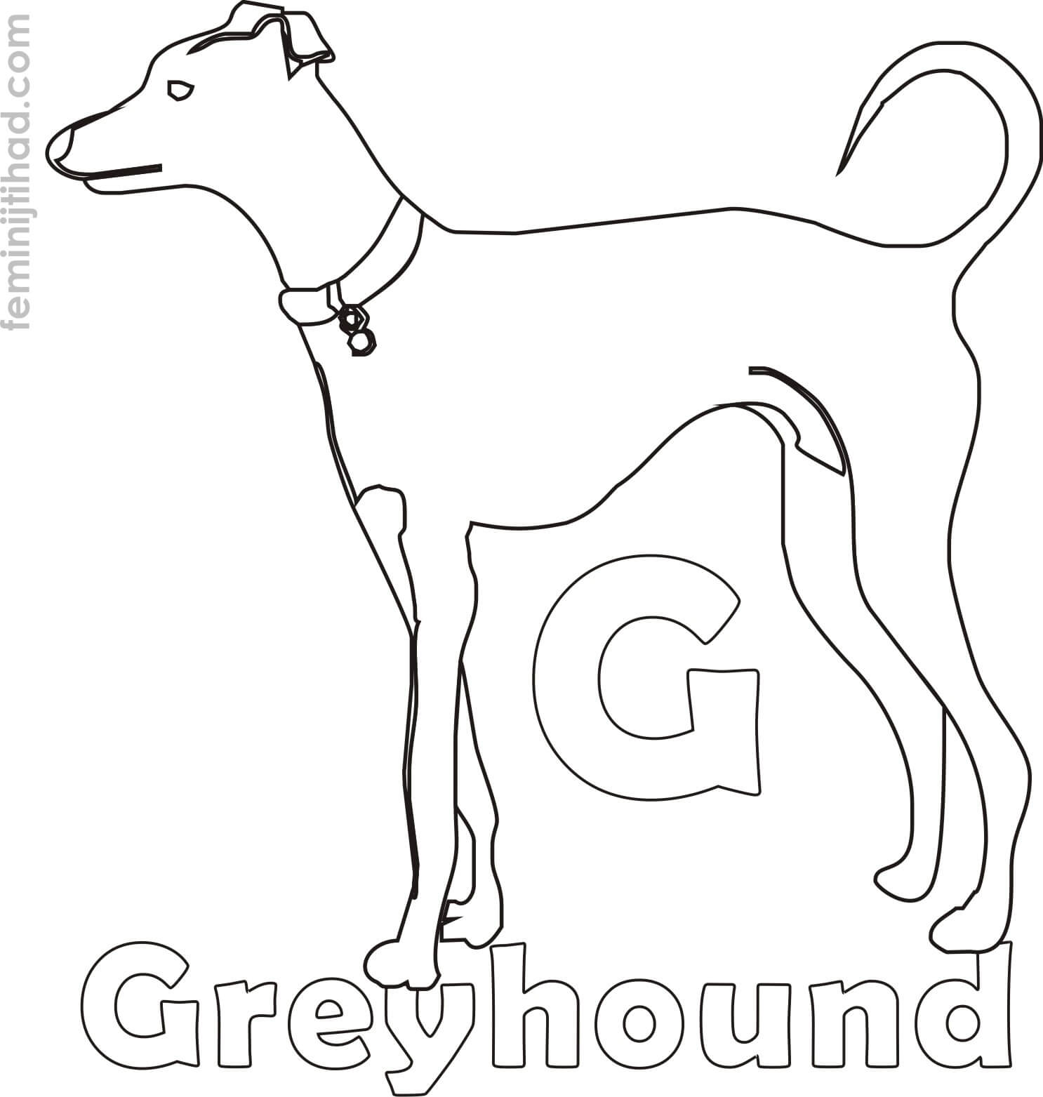 1486x1563 Greyhound Coloring Pages Coloring Pages For Kids