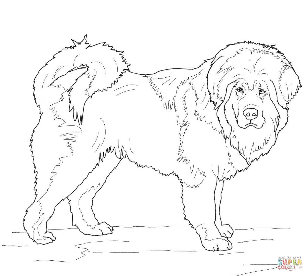 1204x1080 English Mastiff Coloring Pages Printable Coloring For Kids