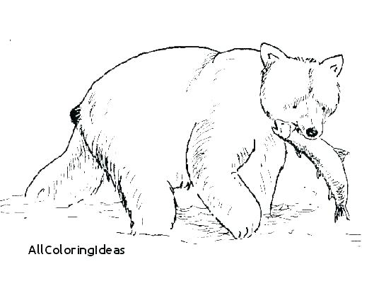 529x404 Grizzly Bear Coloring Page Bear Bear Coloring Page Free Printable