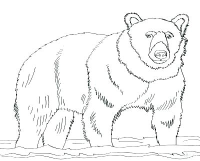 400x322 Grizzly Bear Coloring Pages Bears Coloring Pages Free Printable