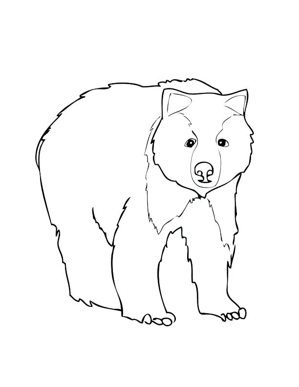 612x792 Grizzly Bear Coloring Pages Grizzly Bear Coloring Page Grizzly