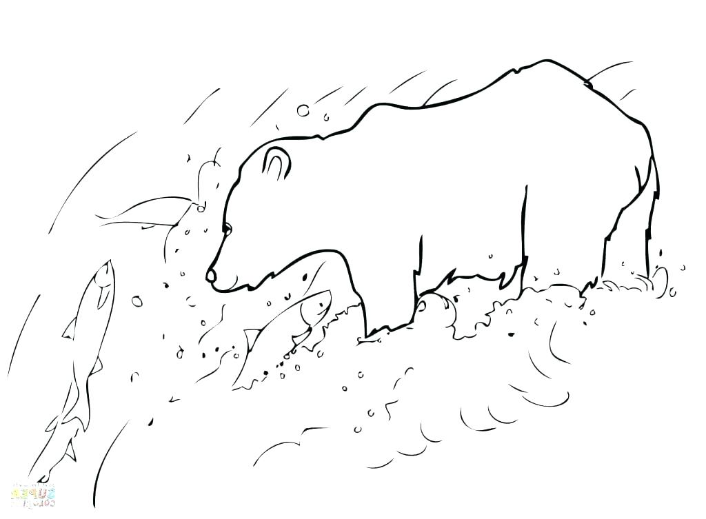 1024x753 Grizzly Bear Coloring Pages S Free Printable Grizzly Bear Coloring