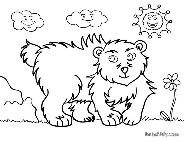 620x480 Grizzly Bear Coloring Pages