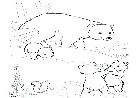 476x333 Grizzly Bear Coloring Pages