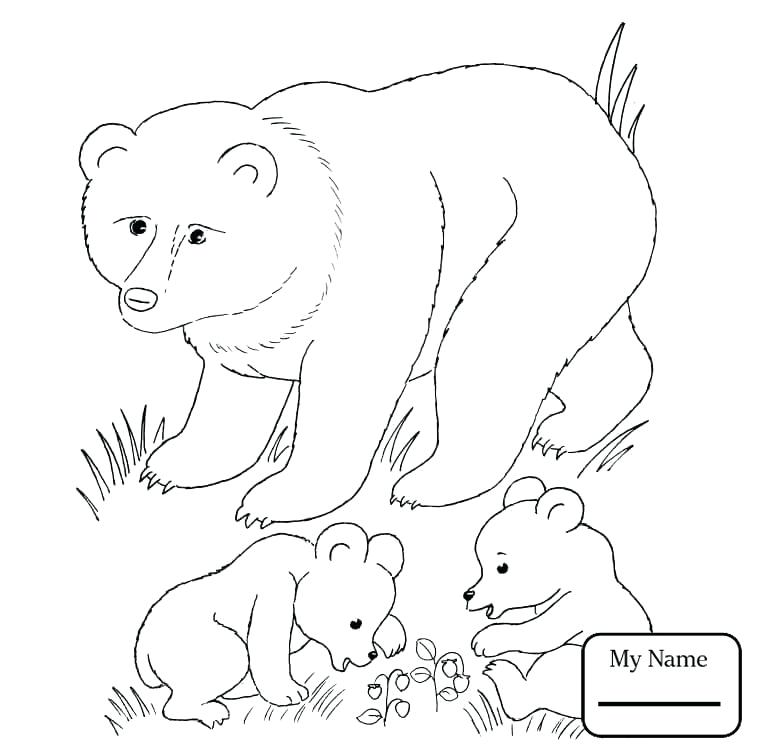 757x753 Grizzly Bear Coloring Pages Coloring Pages Mammals Brown Bears