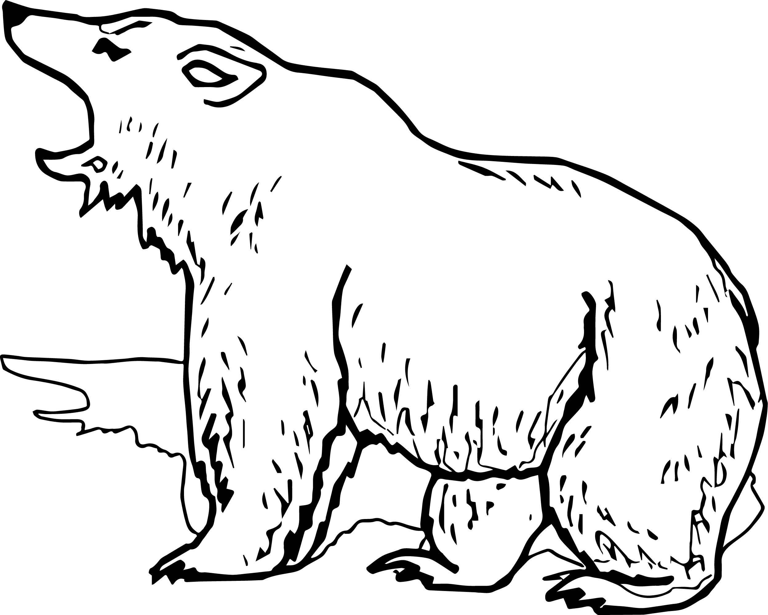 2496x1999 Grizzly Bear Yell Coloring Page Wecoloringpage