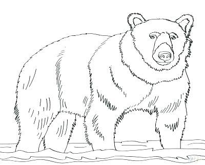 400x322 Coloring Page Of A Bear Grizzly Bear Coloring Pages In Addition